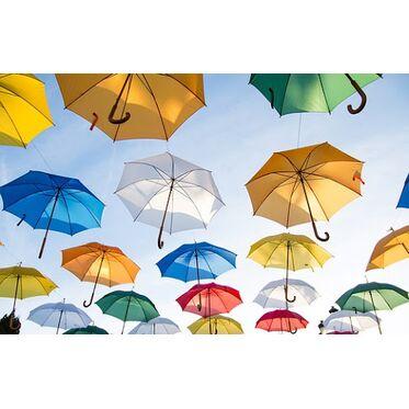 Как правильно сушить зонт.  Вы точно этого не знали!