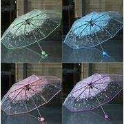 Женские зонты - Зонтик, голубой П0025