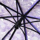 Женские зонты - Зонтик, голубой 0025