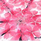 Женские зонты - Зонтик 0026 - 2