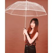 Зонтик П0106